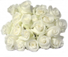 white roses online to philippines