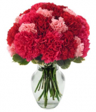 online carnations to philippines