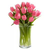 12 Pink Tulips send to philippines