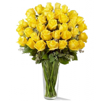 24 yellow roses send to philippines