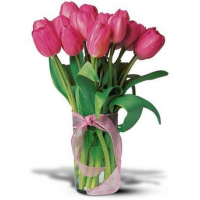 send 12 pink tulips to philippines