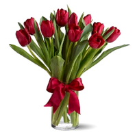 send 12 red tulip to philippines