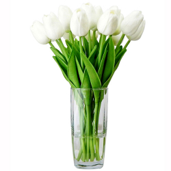 12 white tulips in vase send to philippines