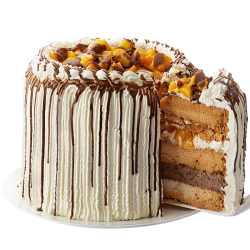 send mango bravo cake by contis cake (best seller) to manila