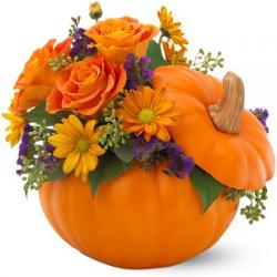 send halloween pumpkin petals to manila philippines