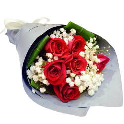 send half dozen red ecuadorian roses bouquet to philippines