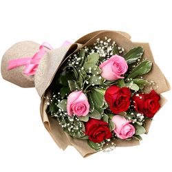 send half dozen red and pink ecuadorian roses to philippines