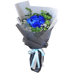 send 6 blue ecuadorian roses bouquet to philippines
