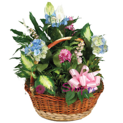 send silk and green garden basket to philippines