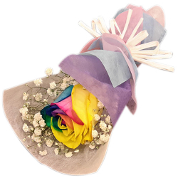 send single pc rainbow rose bouquet to philippines
