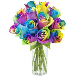 send 1 dozen rainbow roses in glass vase to philippines