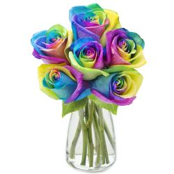 send half dozen rainbow roses in glass vase to philippines