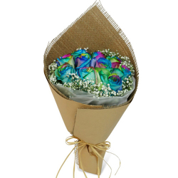 send 10 pcs rainbow roses in a bouquet to philippines
