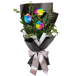 send 3 rainbow roses in this stunning bouquet to philippines