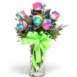 send half dozen rainbow roses in vase to philippines