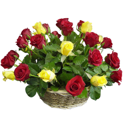 24 red and yellow rose in basket