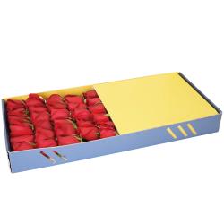 send 2 dozen red rose in box to philippines