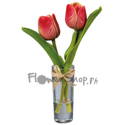 send 2 pcs. red color tulip in vase to philippines