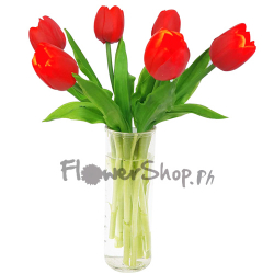 send 6 holland red tulips in glass vase to philippines