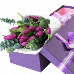 12 purple holland tulip in box to philippines