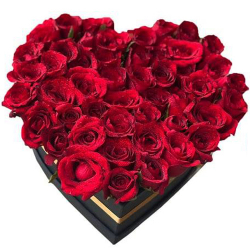 48 Red Roses in a Heart Shaped Box