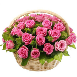 24 Pink Roses in Basket