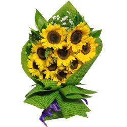 9 pcs Sunflower in a Bouquet