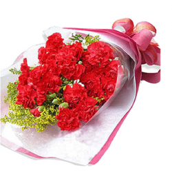 send 12 red carnations in bouquet to philippines