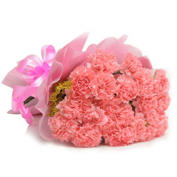 send 20 pink carnations send to philippines