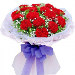 send 12 red carnations to philippines