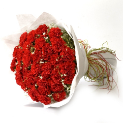 Send 20 Red Carnations To Philippines