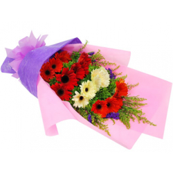 buy 12 red gerberas in bouquet in philippines
