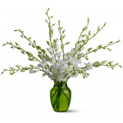send 10 stems white orchids in vase to philippines