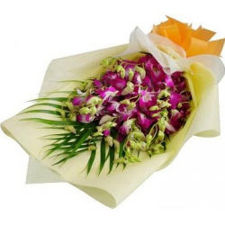 send 12 orchids to philippines