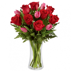 send 12 red rose and 6 tulips to philippines