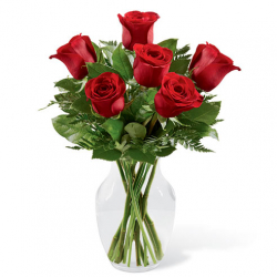 Send 6 Red Rose to Philippines