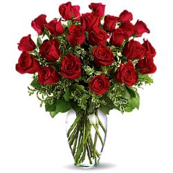 Send 24 Red Rose tom Philippines