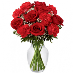 send 6 red rose and 6 carnation in vase to philippines