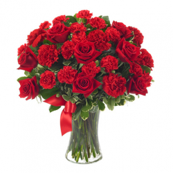 send 12 red rose with 12 red carnation