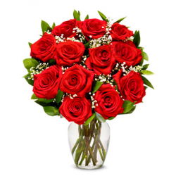 Send 12 Long Stem Rose to Philippines