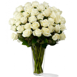 send 24 white roses in vase