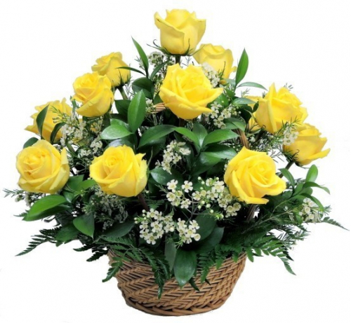12 Pcs. Yellow Roses in Basket